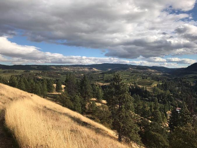 Mosier plateau trail2